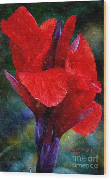 Vibrant Canna Bloom Wood Print