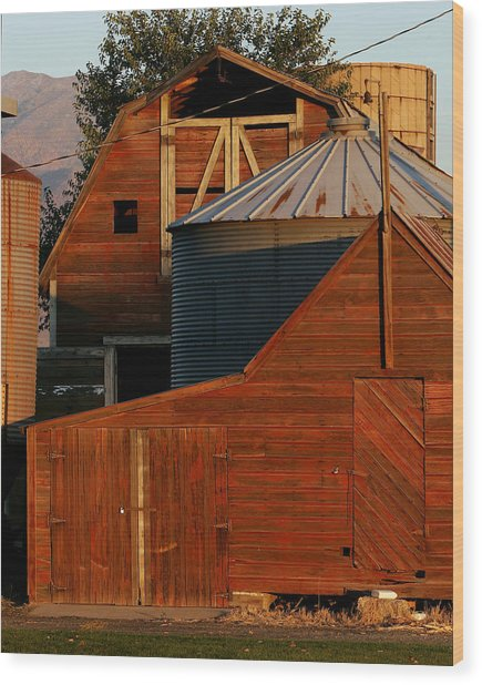 Vibrant Red Barn And Out-buildings Wood Print by Kirk Strickland
