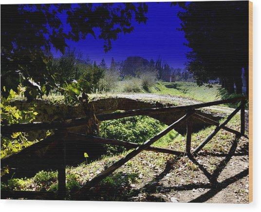 Vicopisano -pisa -little Bridge Wood Print by Daniele Fedi