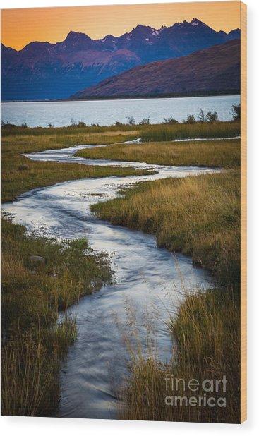 Viedma Creek Wood Print