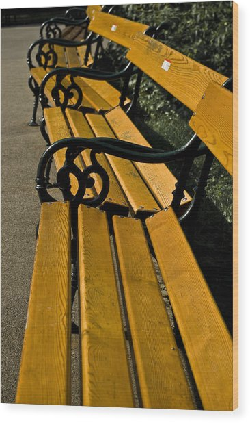 Vienna Benches Wood Print by Gabor Fichtacher