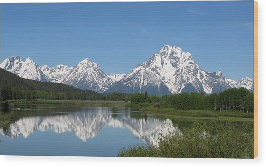 View At Oxbow Bend In Grand Tetons National Park Wood Print