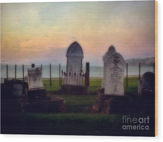 View For Eternity Wood Print