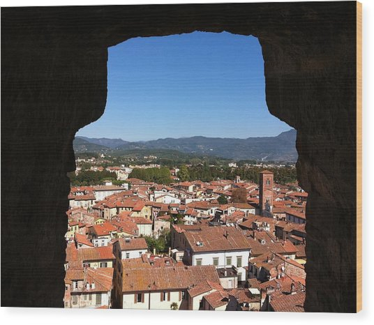 View From A Tower Window In Lucca Wood Print