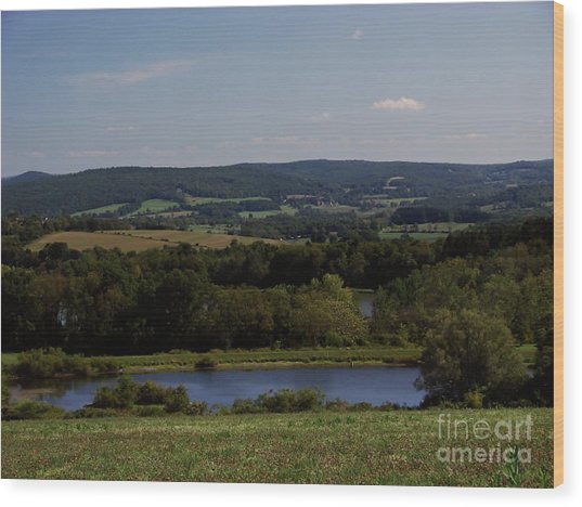 View From Amenia Wood Print