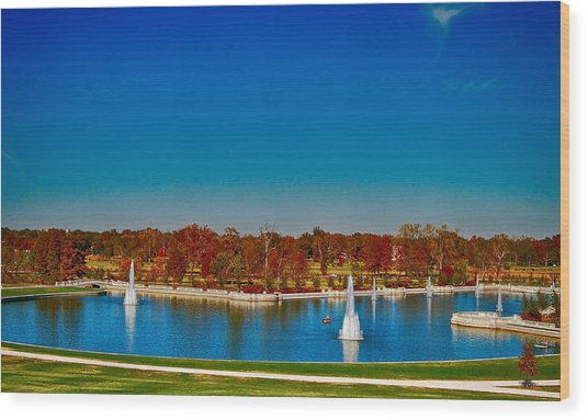 View From Art Hill Forest Park Missouri Wood Print