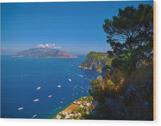 View From Capri Wood Print