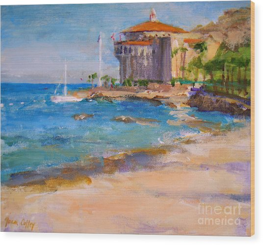 View From Descanso Beach Wood Print
