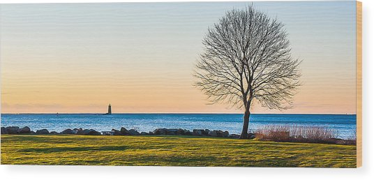 View From Great Island Common Wood Print