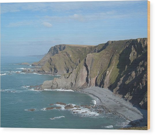 Higher Sharpnose Point Wood Print