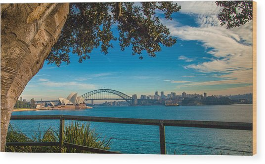 View From Lady Macquarie's Chair Wood Print by Dasmin Niriella