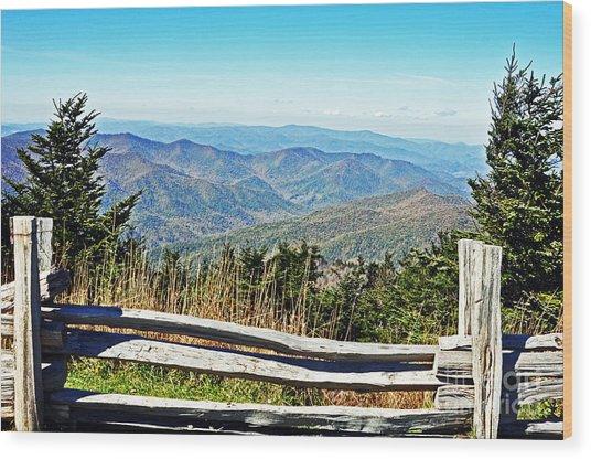 View From Mt. Mitchell Summit Wood Print