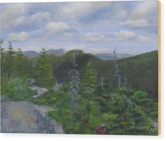 View From Noon Peak Wood Print