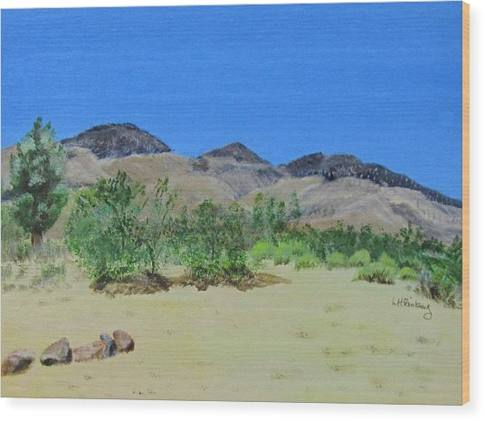 View From Sharon's House - Mojave Wood Print