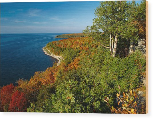 View From Sven's Bluff Wood Print