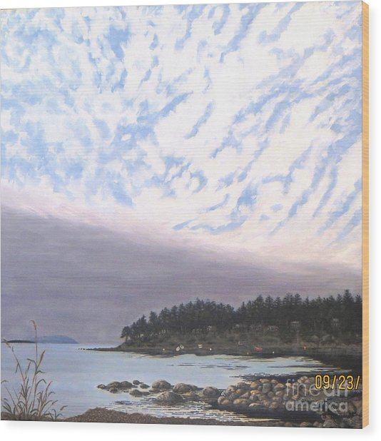 View From The Haven Beach Gabriola Wood Print by Beverly Theriault