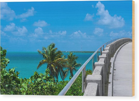View From The Old Bahia Honda Bridge Wood Print
