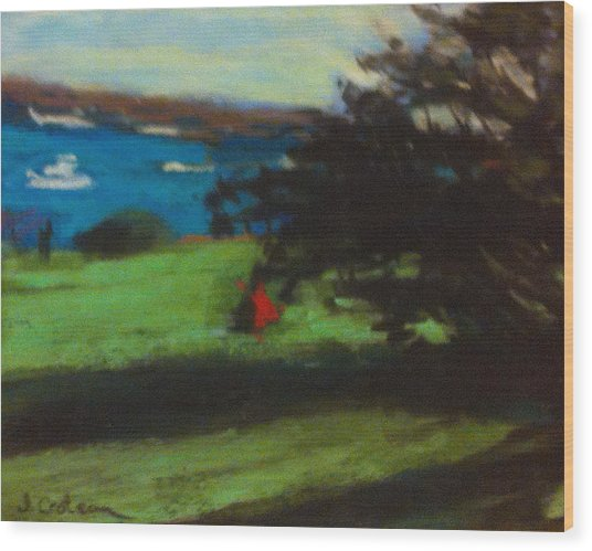 View From The Prom Wood Print by Jane Croteau