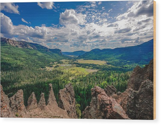 View From Wolf Creek Pass Wood Print