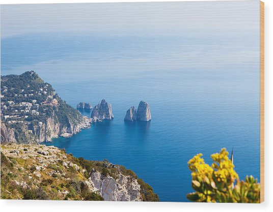View Of Amalfi Coast Wood Print by Susan Schmitz