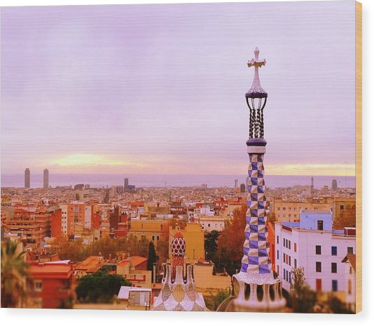 View Of Barcelona Wood Print by Maeve O Connell