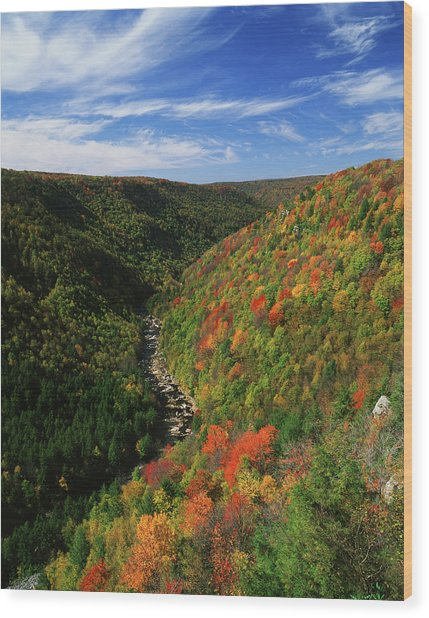 View Of Blackwater Canyon In Autumn Wood Print
