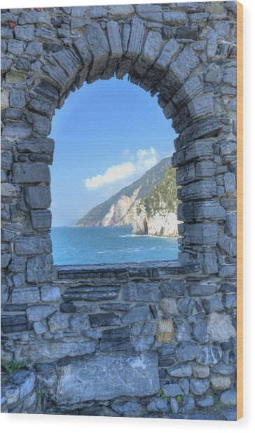 View Of Cinque Terre From Portovenere Wood Print
