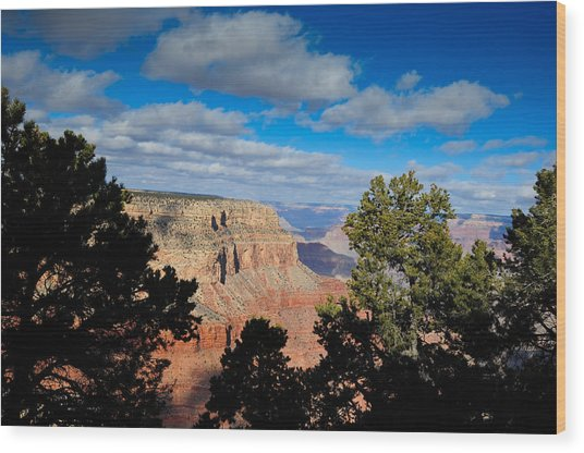 Grand Canyon Through The Junipers Wood Print