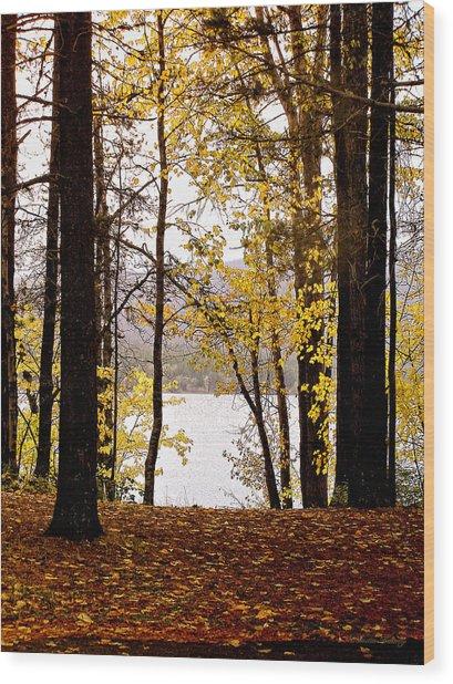 View Of  Lake Mcdonald Wood Print