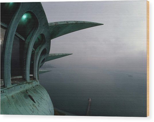 View Of New York Harbor From The Top Wood Print