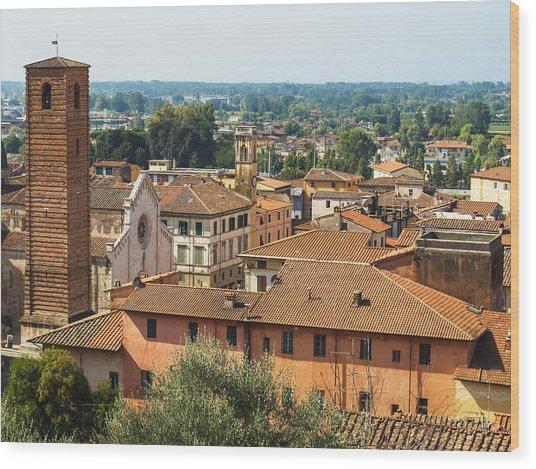 View Of Pietrasanta Wood Print