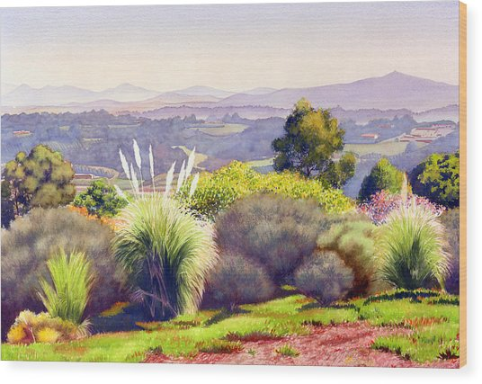 View Of Rancho Santa Fe Wood Print by Mary Helmreich