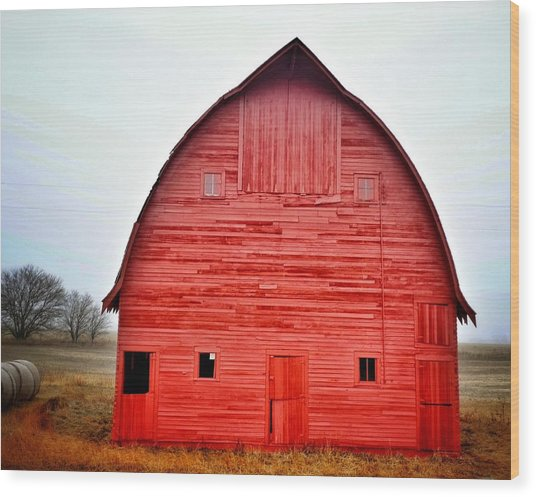 View Of Red Barn Wood Print by Shannon Ramos / Eyeem