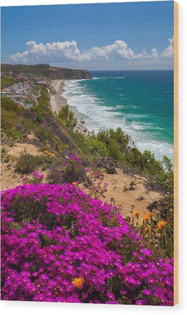 View Of Strand Beach And Dana Point Headland Wood Print