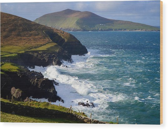 View Of The Blasket Island Wood Print