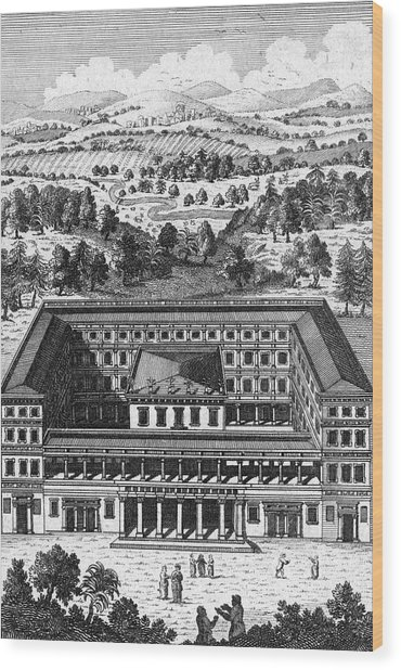'view Of The House Of The  Forest Wood Print