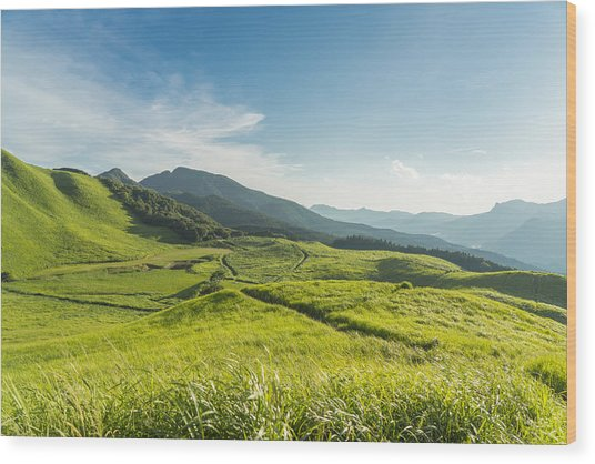 View Of The Plateau,soni Kougen In Japan Wood Print by Yagi-Studio