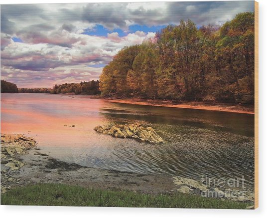 View Of The Salmon River Wood Print