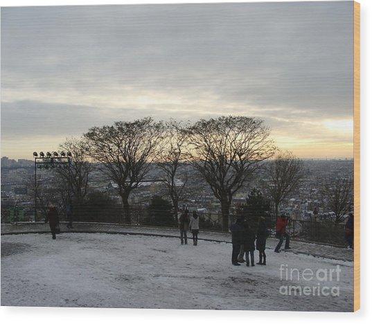 View Over Paris Wood Print
