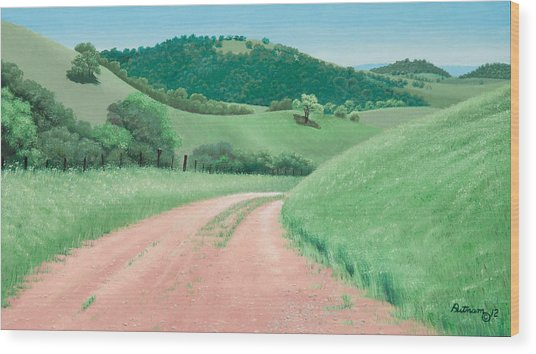 Views From Canada De Los Osos #2 Wood Print