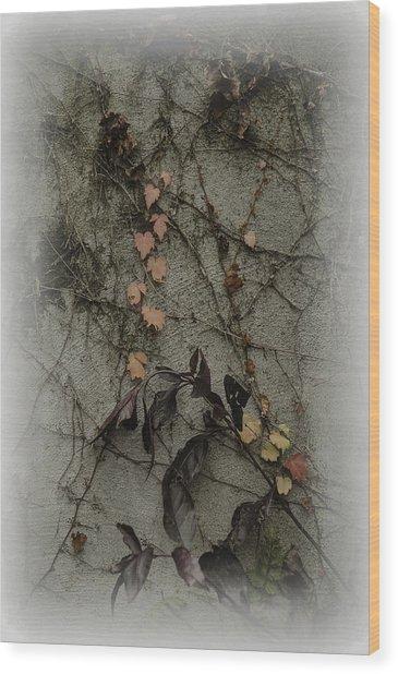 Vignes D'automne Wood Print