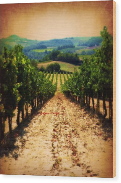 Vigneto Toscana Wood Print