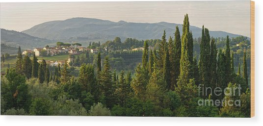 Village And Cypresses Wood Print