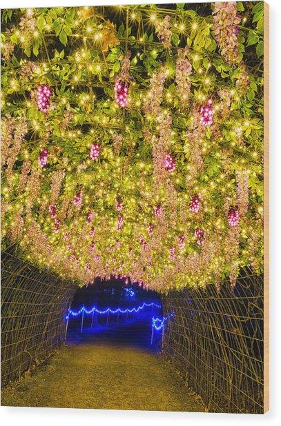 Vine Tunnel Wood Print