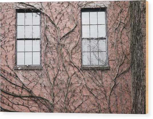 Vines And Brick Wood Print