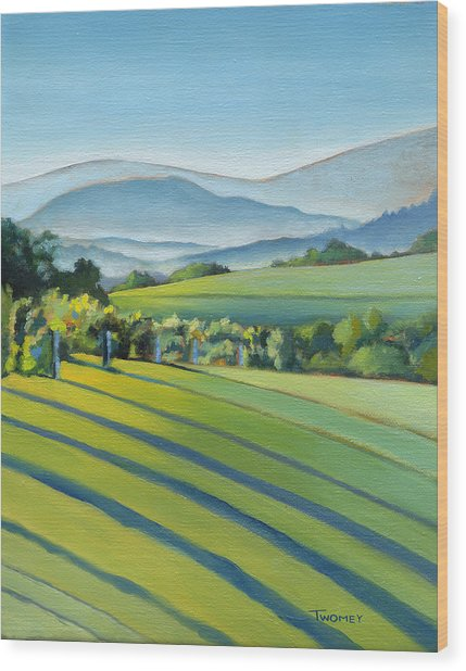 Vineyard Blue Ridge On Buck Mountain Road Virginia Wood Print
