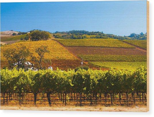Vineyard Colors Wood Print