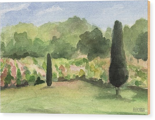 Vineyard In Provence Watercolor Paintings Of France Wood Print by Beverly Brown