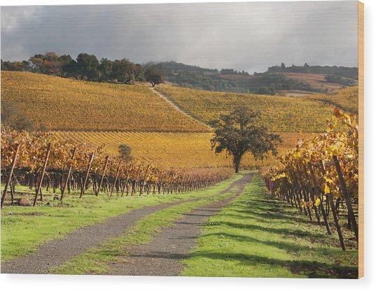 Vineyard Roads Wood Print by Kent Sorensen