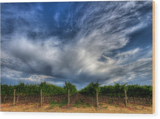 Vineyard Storm Wood Print